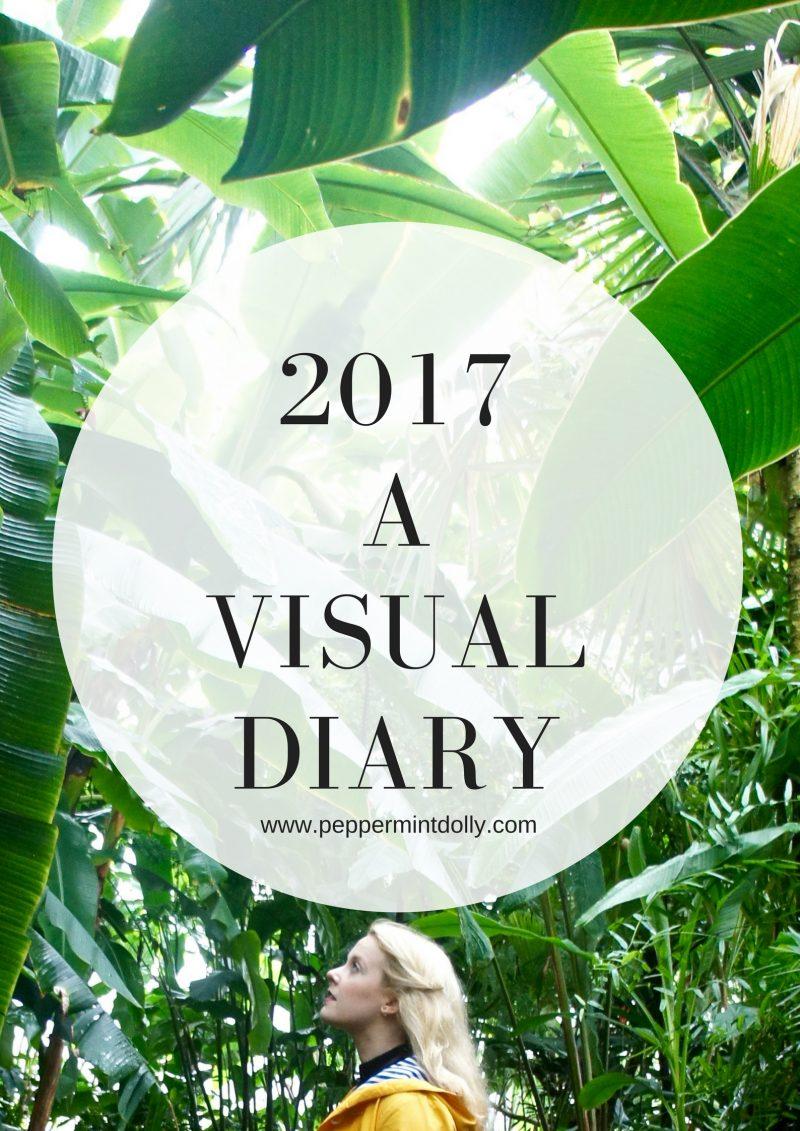 2017 A Visual Diary