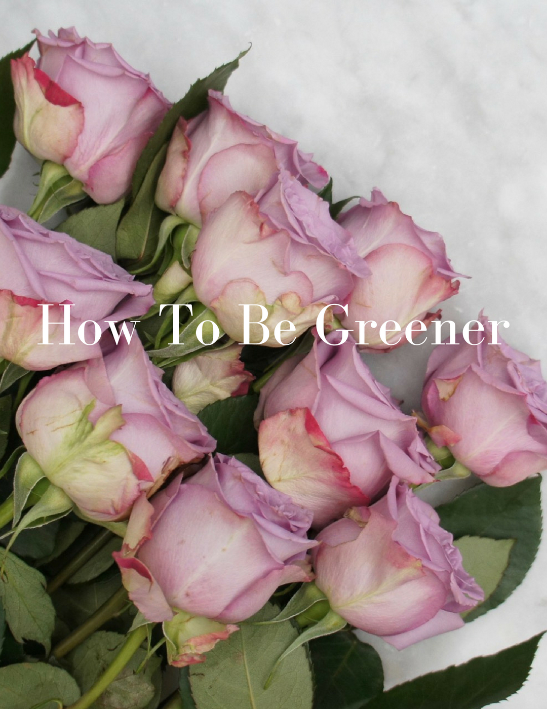 How To Be Greener-3 Simple Ways